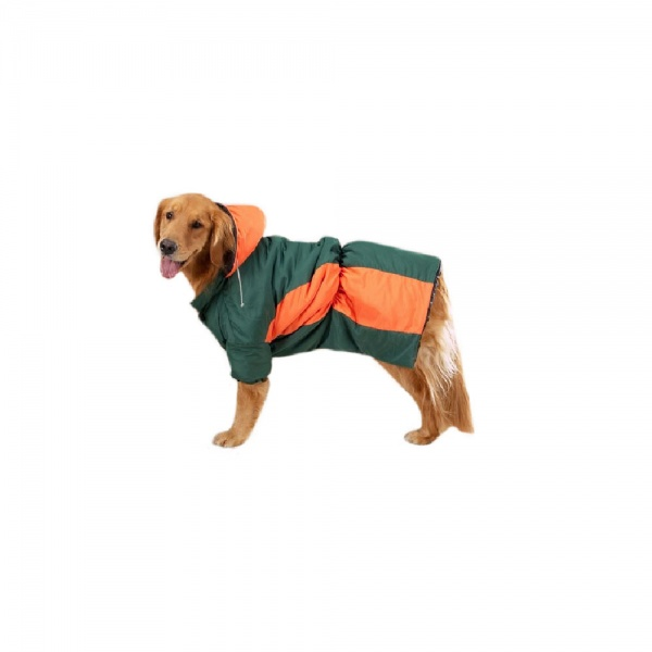 Zack & Zoey Base Camp Parkas Green & Orange - XSmall
